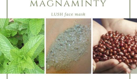 LUSHのパワーマスクでニキビレス、毛穴レスになる本当に効果的な使い方